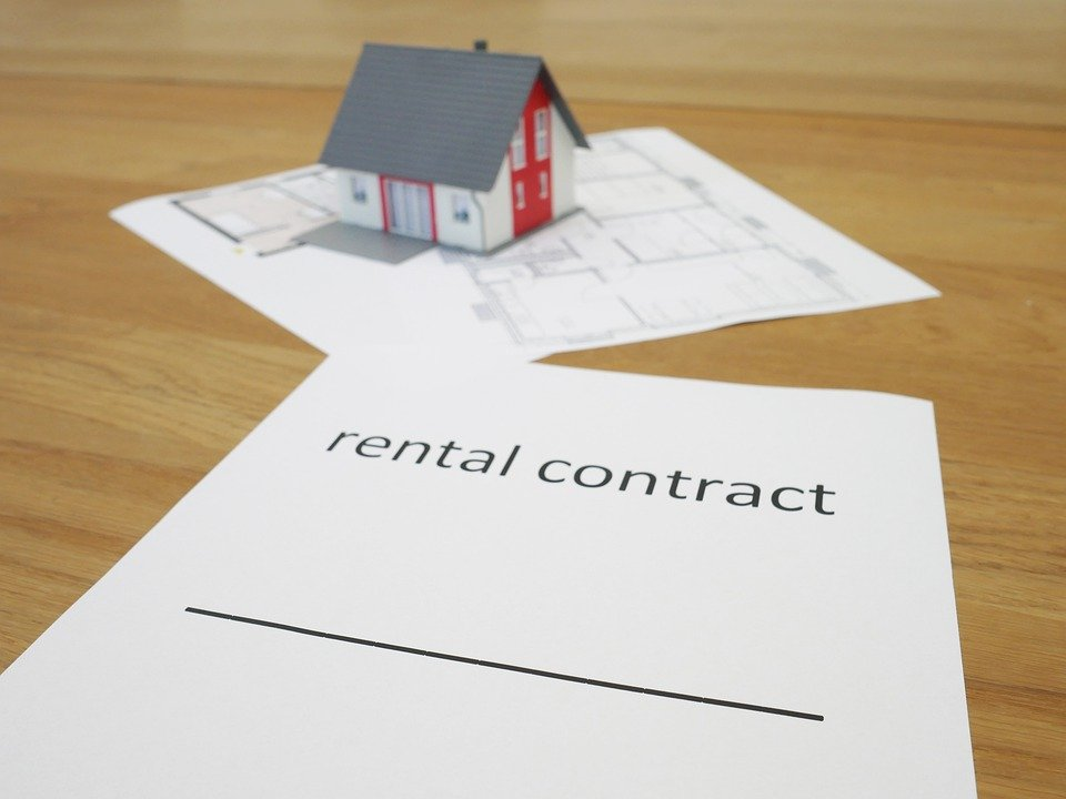 Pest Control: Is it the Landlords Responsibility or Tenant